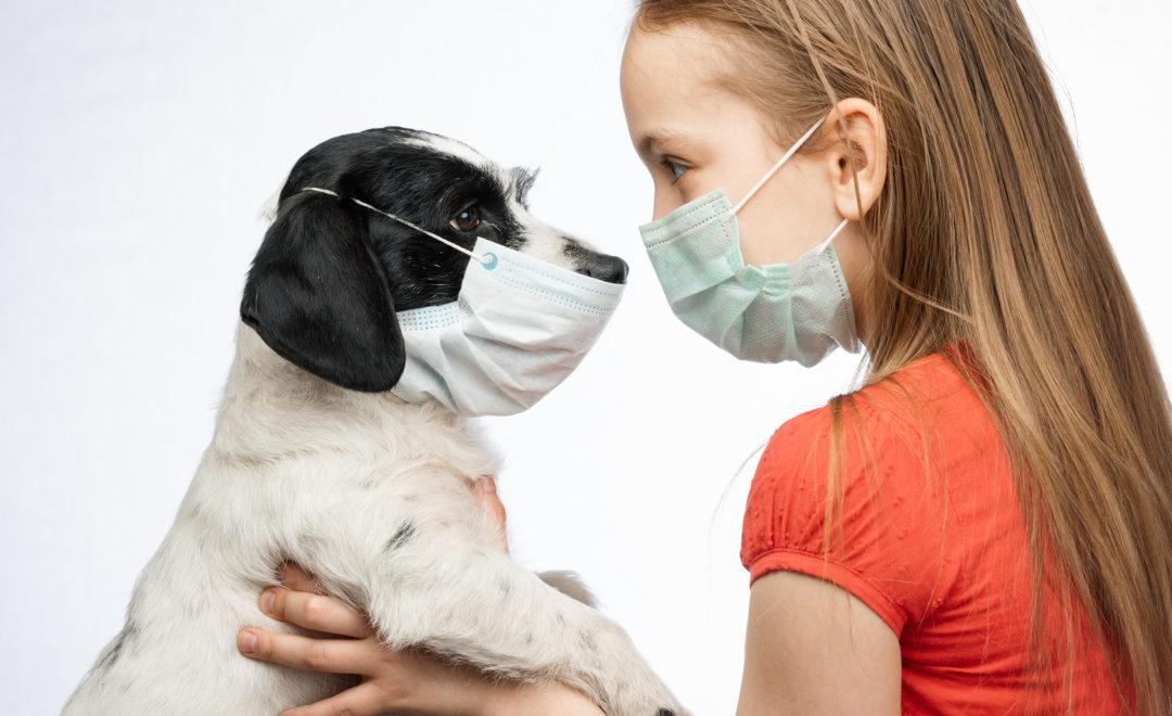 masked girl holding masked dog